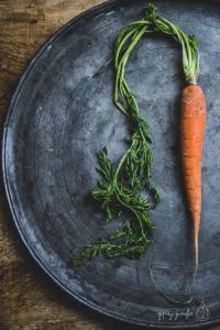 still life piatto peltro e carota